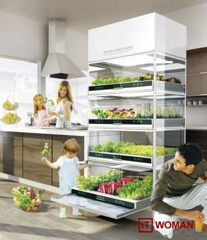 Домашний сад у Вас на кухне!