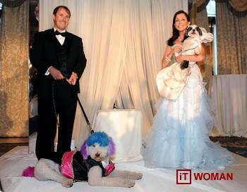 Самая дорогая свадьба для ... собак