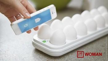 Приложение для яиц