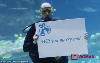 Как сделать предложение в аквариуме?